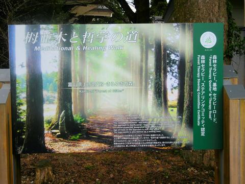 「栂並木と哲学の道」の看板