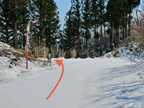 犀鶴林道に突き当たり左、曲がってすぐに造林作業道が左にある