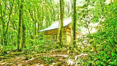 ブナの森に佇む行者堂
