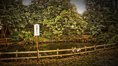 水の枯れない池