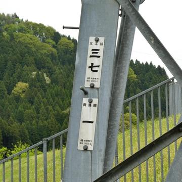 友江線37番/青島線1番